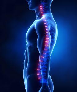 Chiropractor Irvine - Portugal Chiropractic